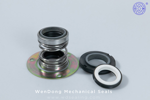 Dual Mechanical Seal WM560D