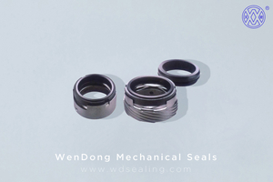 Mechanical Seal WMM74D