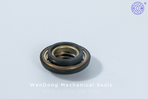 China Water Pump Mechanical Seal WM FTS